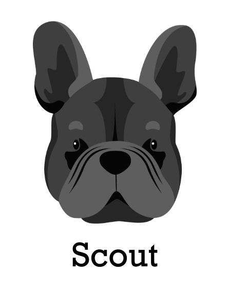 Pet 11x14 Poster(s), Board, Home Décor -French Bulldog 1