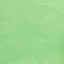 Quire Fold Premium Mtt Cool Mnt Tissue Ppr Colored - 20 X 30 - Quantity: 480 - Tissue Paper - Packagingsheettype: Ream (Quire Folded)