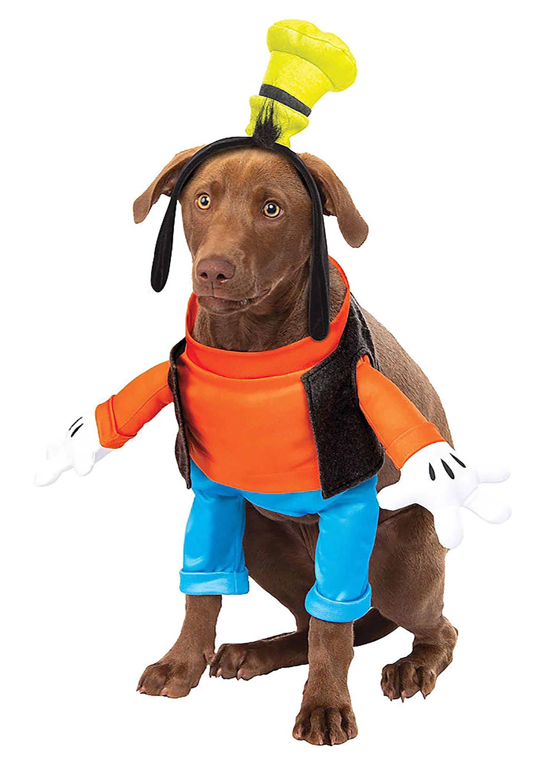 Disney Goofy Dog Costume