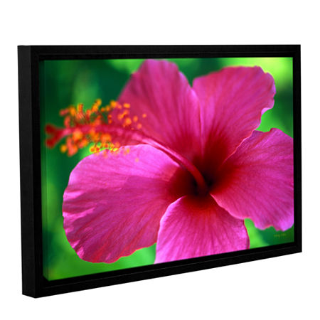 Brushstone Maui Pink Hibiscus Gallery Wrapped Floater-Framed Canvas Wall Art, One Size , Pink