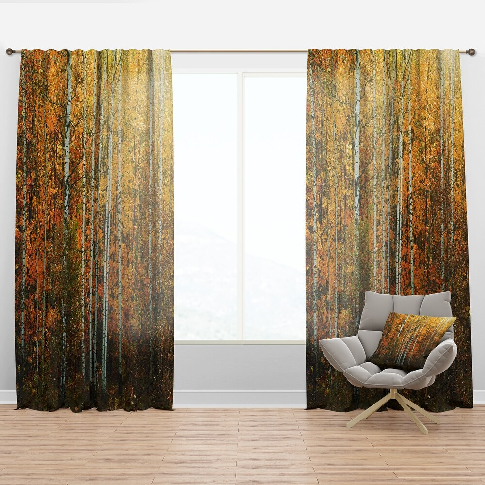 Designart 'Yellow Colorful Autumn Forest' Forest Curtain Panel (50 in. wide x 95 in. high - 1 Panel)