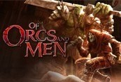Of Orcs And Men Steam CD Key