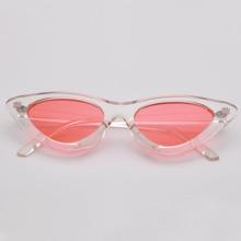 Tinted Lens Cat Eye Sunglasses
