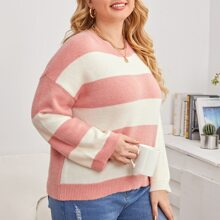 Plus Color Block Drop Shoulder Sweater