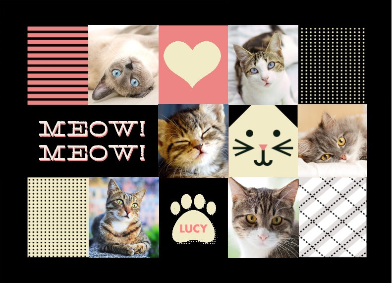 Pets 14x20 Pillow, Gift -Cat Collage