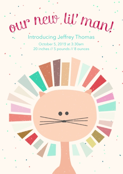 Newborn Flat Glossy Photo Paper Cards with Envelopes, 5x7, Card & Stationery -Little Lion Baby Announcement Boy