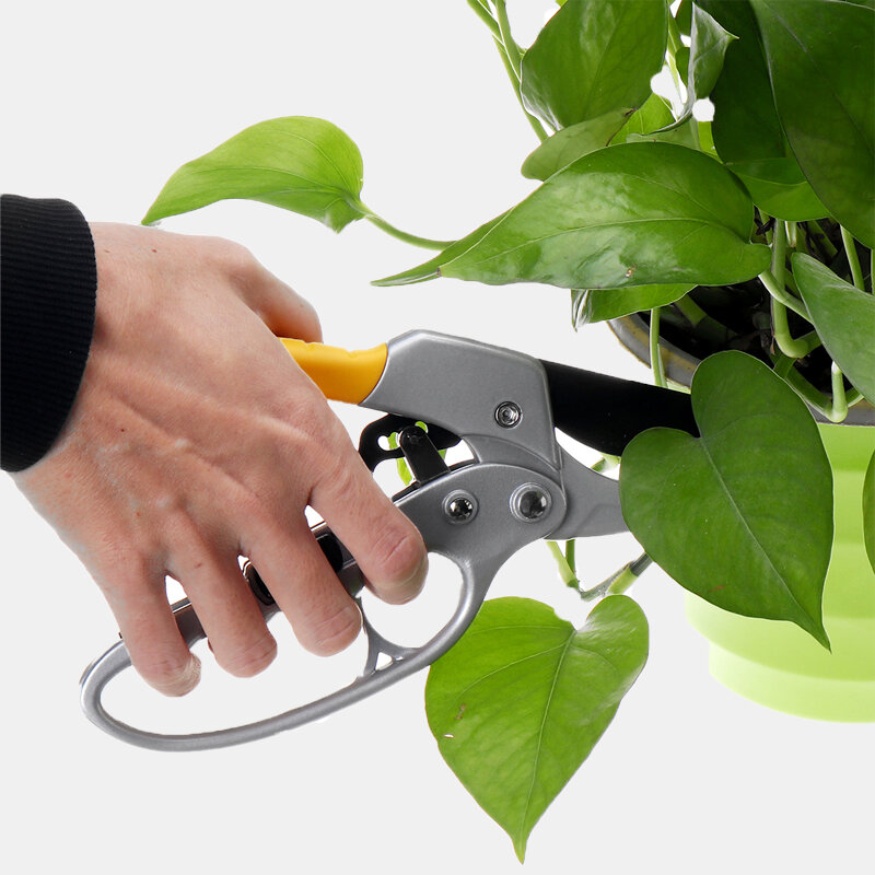 Professional Garden Segmented Labor-Saving Fruit Branch Shears Garden Tools Scissors