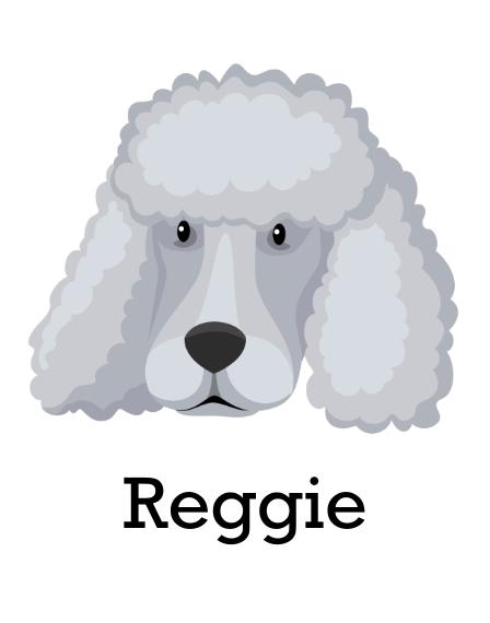 Pet 11x14 Poster, Home Décor -Poodle Shaved 3