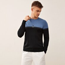 Men Two Tone Letter Embroidery Sweater