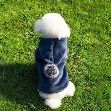 Hund Hoodie mit Pompon Dekor