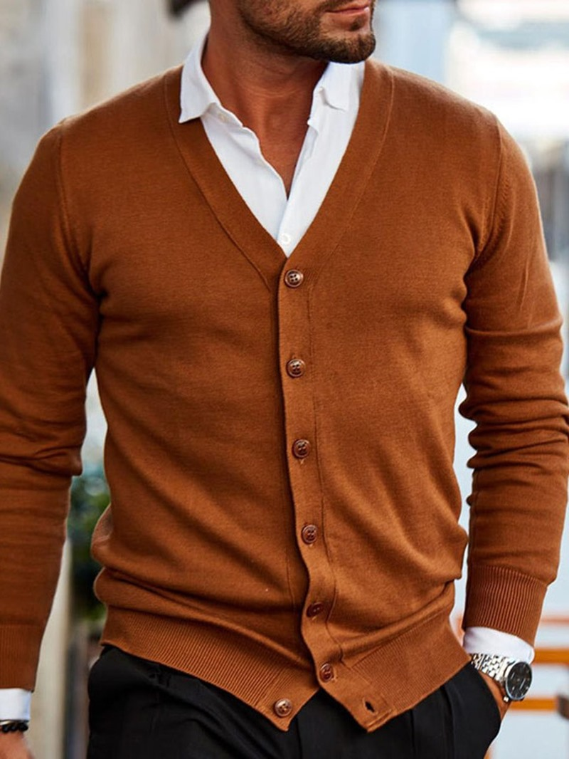 Ericdress Plain V-Neck Standard Casual Fall Mens Sweater