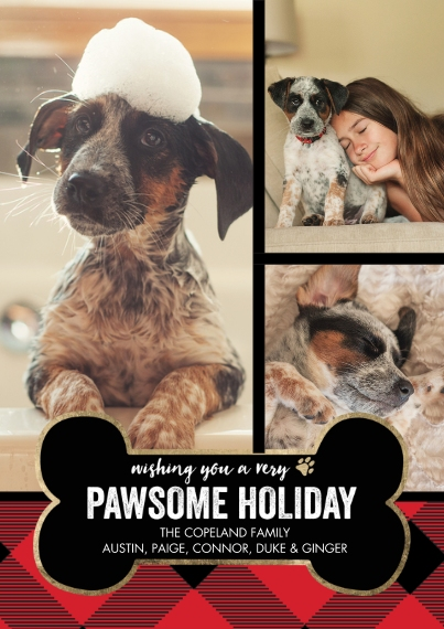 Christmas Photo Cards Flat Glossy Photo Paper Cards with Envelopes, 5x7, Card & Stationery -Holiday Dog Biscuit by Tumbalina