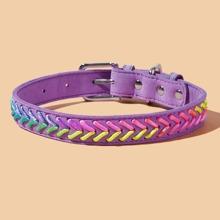 1pc Colorblock Dog Collar