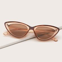 Gafas de sol de marco acrilico de ojo de gato de hombres