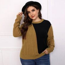Plus Two Tone Cable Knit Sweater