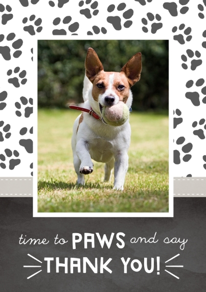 Pets 5x7 Cards, Premium Cardstock 120lb with Scalloped Corners, Card & Stationery -Pawsome Sauce