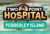 Two Point Hospital: Pebberley Island DLC Steam Altergift