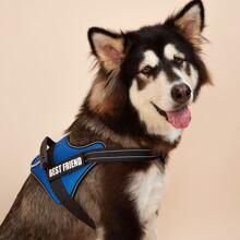 No Pull Colorblock Dog Harness