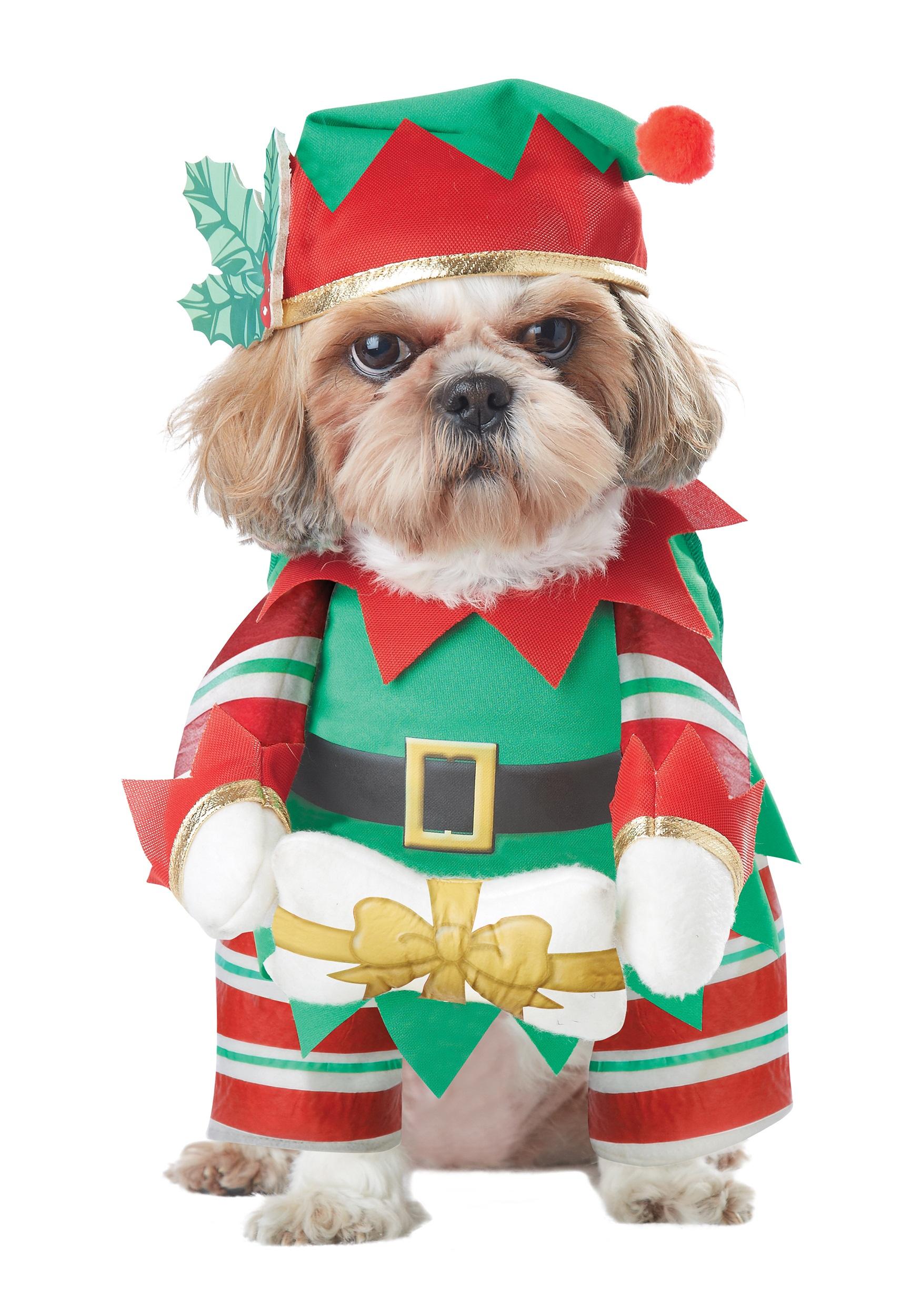 Dog Costume Elf Pup