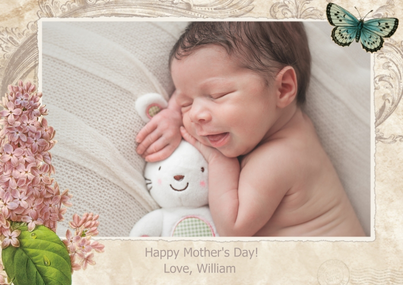 Mother's Day Cards Flat Glossy Photo Paper Cards with Envelopes, 5x7, Card & Stationery -Lilacs And Butterfly