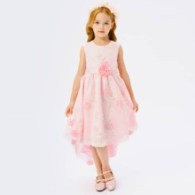 Toddler Girls Leaf Embroidery Appliques High Low Party Dress