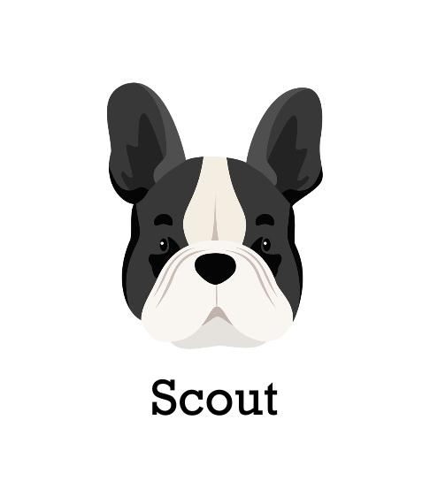 Pet Canvas Print, 8x10, Home Décor -French Bulldog