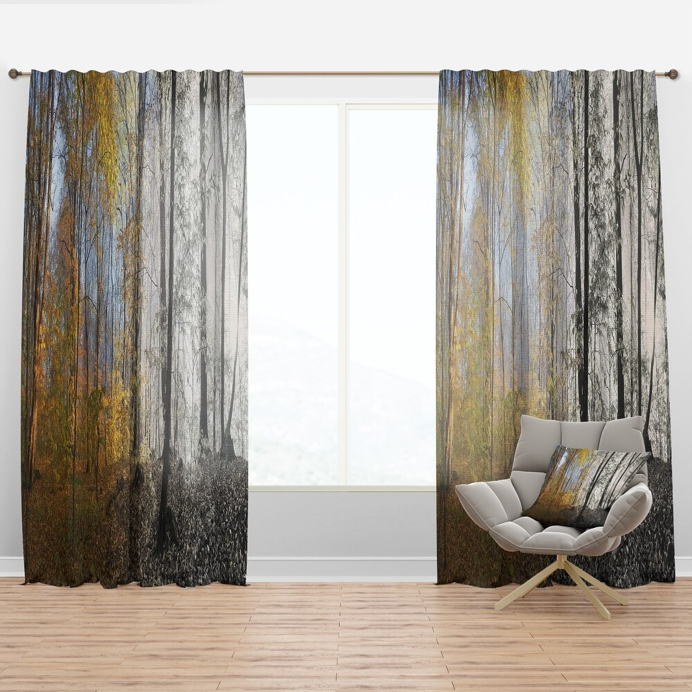 Designart 'Yellow Morning in Forest Panorama' Landscape Curtain Panel (50 in. wide x 108 in. high - 1 Panel)