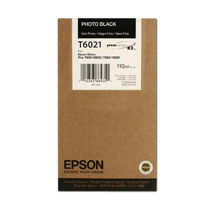 Epson T602100 Original Photo Black Ink Cartridge