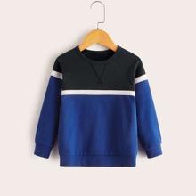 Toddler Boys Cut And Sew Raglan Sleeve Sweatshirt