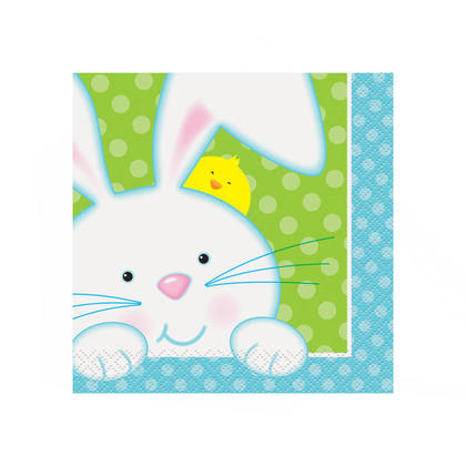 Cute Easter Beverage Napkins Spring Bunny Easter Party Paper 16 Pcs