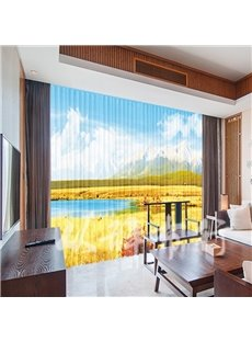 Soft Chiffon Security and Delicate 3D Printing Sheer Curtains for Living Room and Bedroom