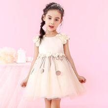 Girls Appliques Contrast Sequin Tie Back Mesh Princess Dress