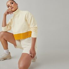 Funnel Neck Two Tone Pullover