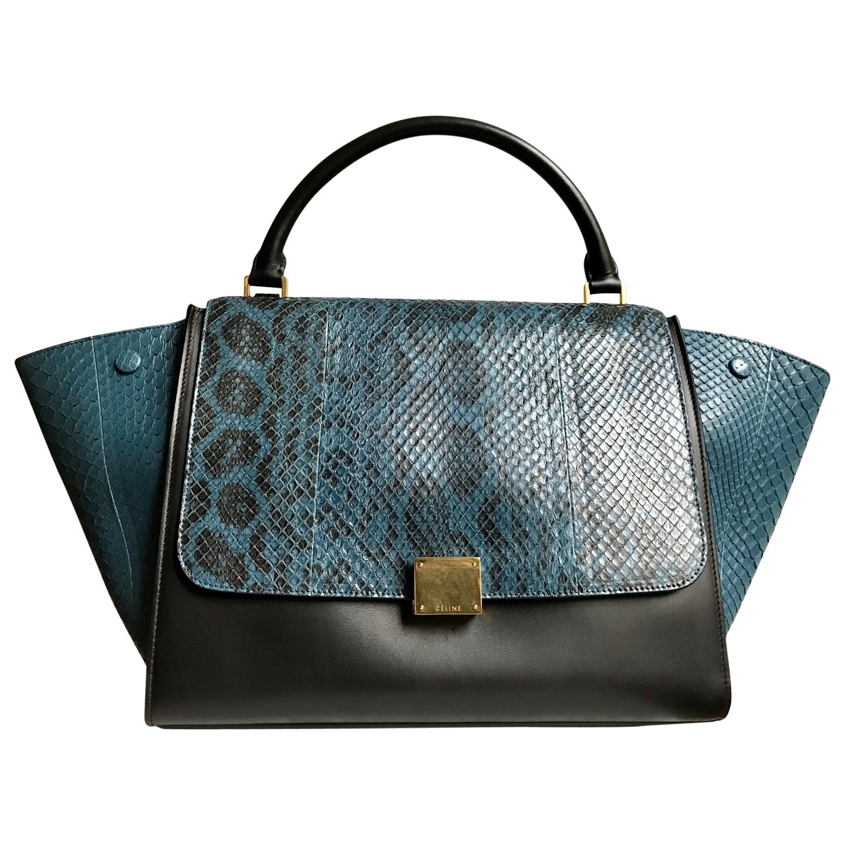 Celine Trapèze Blue Python handbag for Women \N