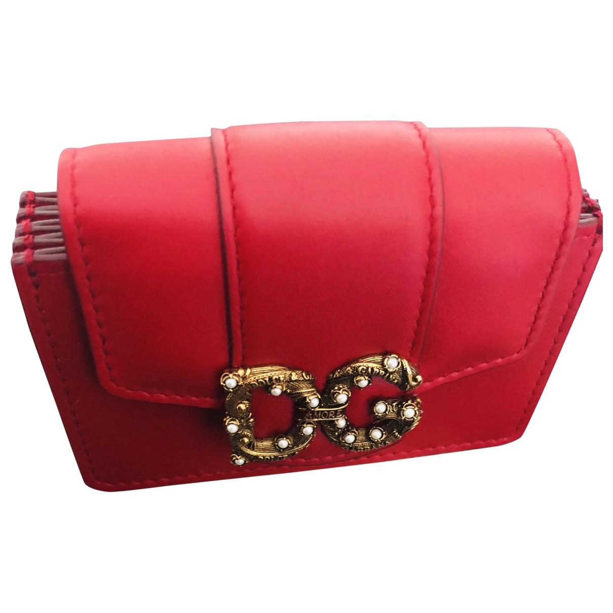 Dolce & Gabbana \N Kleinlederwaren in  Rot Leder