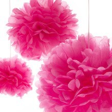 Hot Pink 3pcs Tissue Pom Pom Set - Wedding Packaging by Paper Mart