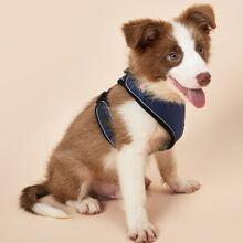 1pc Contrast Binding Dog Harness
