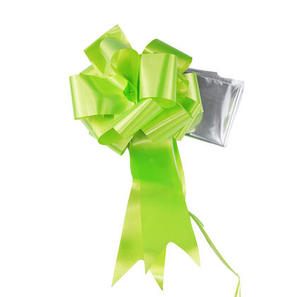 Sac transparent 30 * 30 pouces, avec noeud de tirage, vert - LIVINGbasics ™