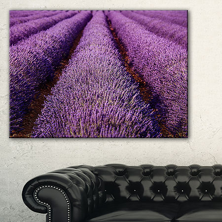 Designart Endless Rows Of Lavender Field Canvas Art, One Size , Blue