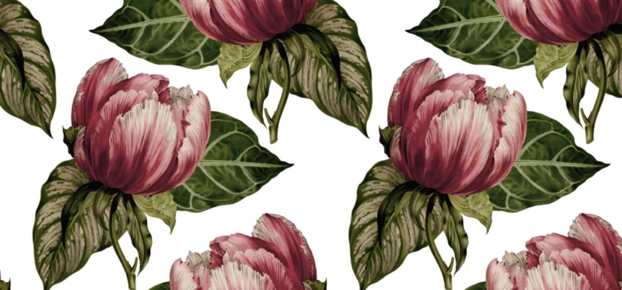 Botanical 11 oz. Pink Accent Mug, Gift -Romantic Flowers