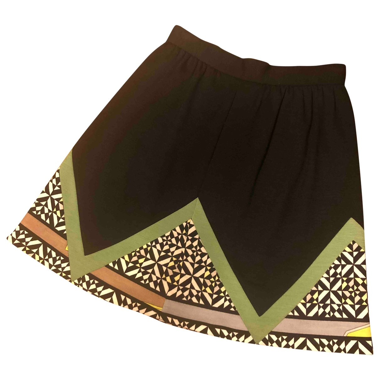 Emilio Pucci \N skirt for Women 42 IT