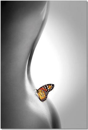 18152 Butterfly 31.5 W 47 H Wall