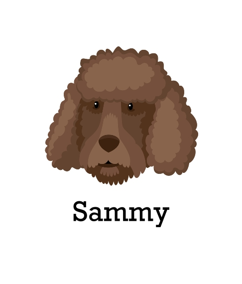 Pet Framed Canvas Print, Chocolate, 8x10, Home Décor -Poodle