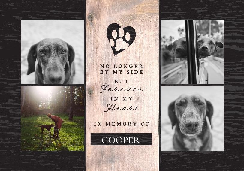 Pet Framed Canvas Print, Black, 20x30, Home Décor -The Good Pet