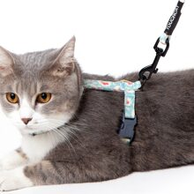 1pc Cat Harness & 1pc Leash