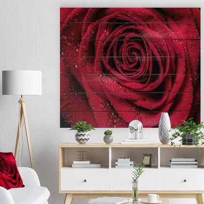 WD10000-46-36 Red Rose Petals With Rain Droplets - Floral Art Print On Natural Pine Wood -
