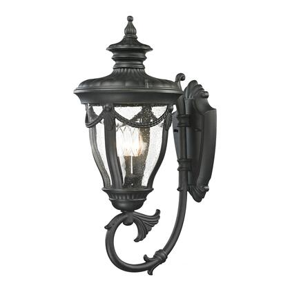 45077/3 Anise Collection 1 Light outdoor Sconce in Textured Matte