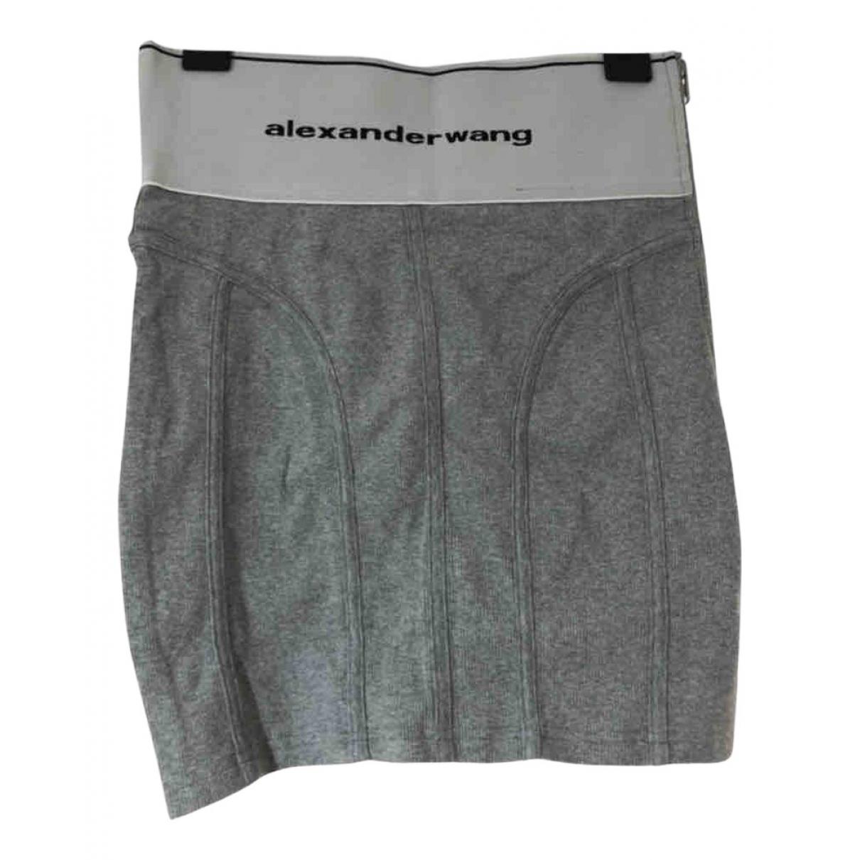 Alexander Wang \N Grey Cotton skirt for Women S International