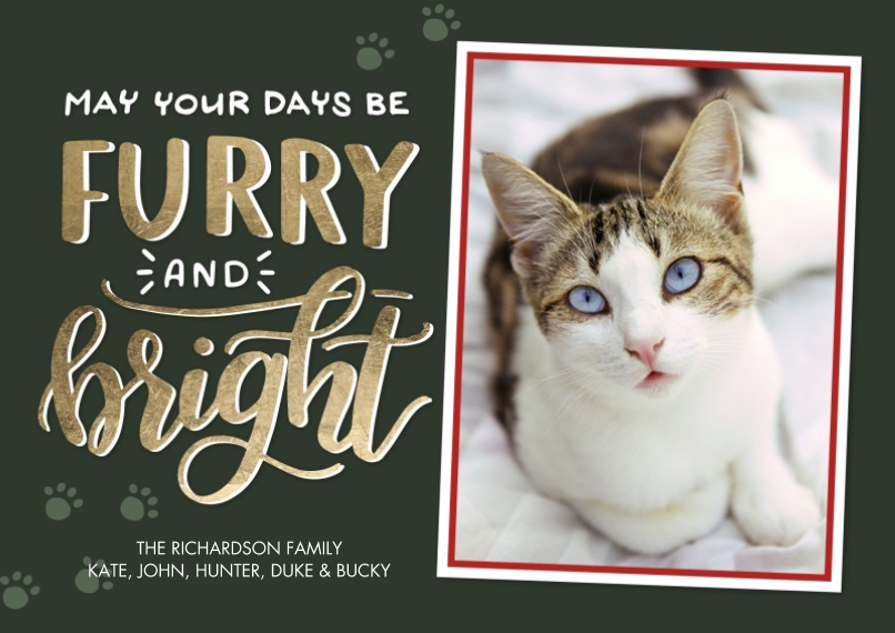 Christmas Photo Cards 5x7 Cards, Premium Cardstock 120lb, Card & Stationery -Christmas Festive Furry Bright by Tumbalina