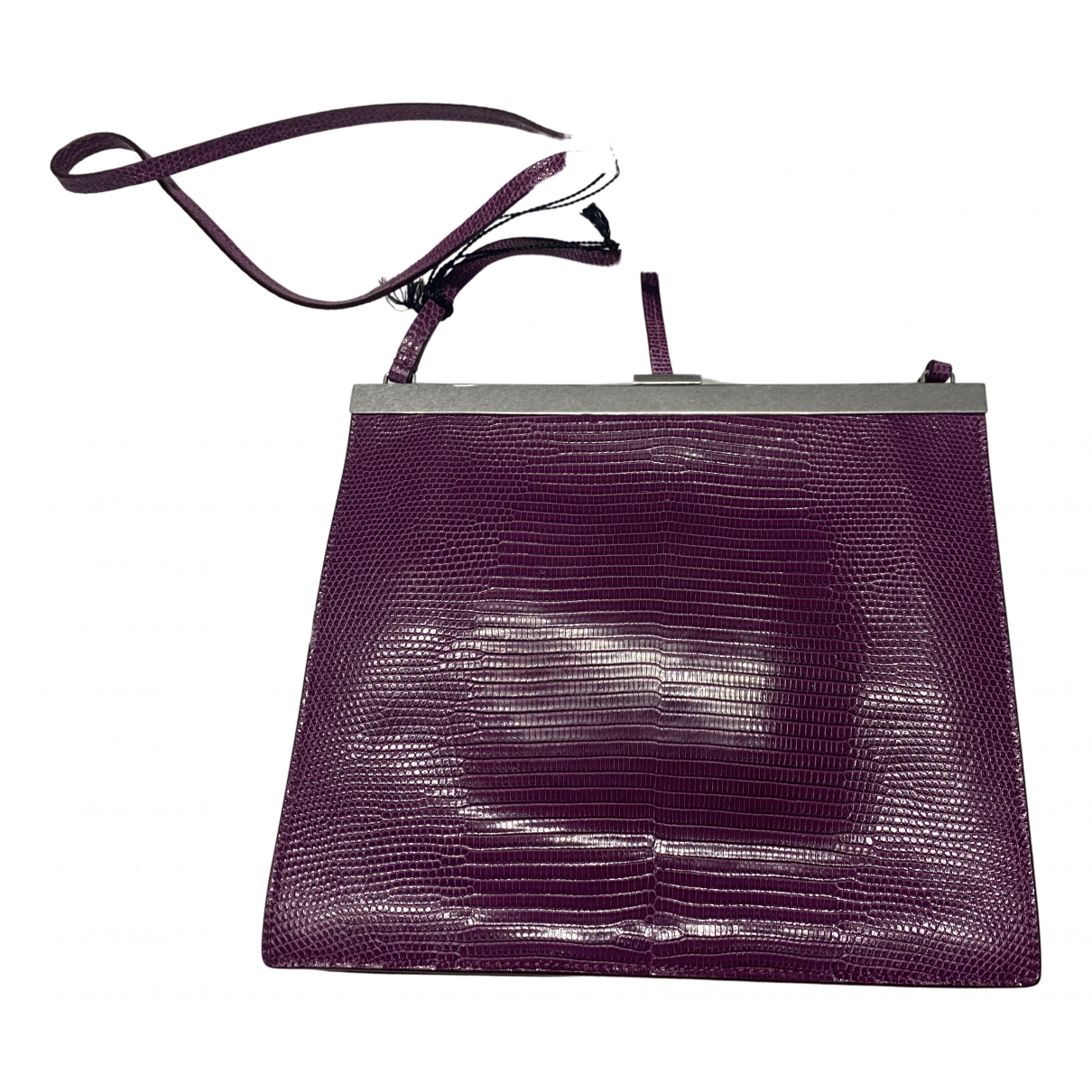 Celine Clasp Purple Lizard Clutch bag for Women \N